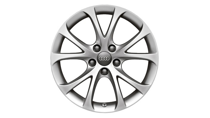 "Cast aluminium wheels, 5Vspoke design (17"")"